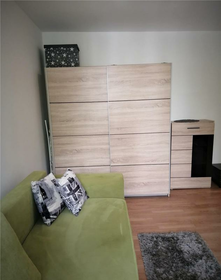 Vanzare apartament, o camera, in Sector 2, zona Floreasca